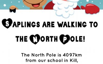 Poster for Fundraiser - Walk To The North Pole
